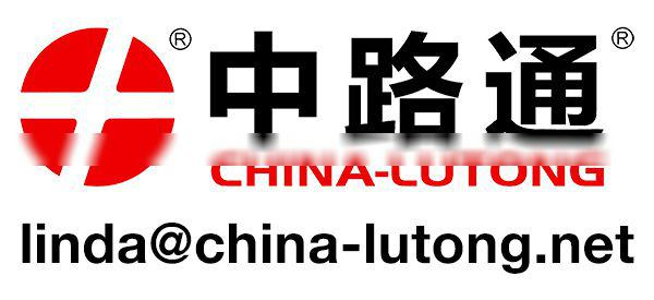China-lutong Head Rotor Plunger Nozzle Factory