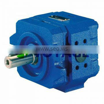 PGF Various Rexroth Hydraulic Pump Hydraulic Gear Pump R900573243 PGF2-2X/013RT20VU2