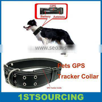 Leather Dog Collar and Leash GPS Tracker