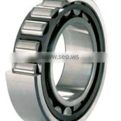 bearing china cylindrical roller bearing NNC4860V SL014860