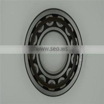 17 years experience manufacturer, All Kinds of Cylindrical roller bearing 22224e