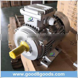 Ms Series Aluminum Housing Three Phase Electric Motor
