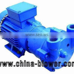 2BV Series monoblock liquid ring vacuum pump, small vacuum pump