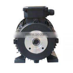 hollow shaft electric motor 24mm