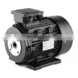 4pole hollow shaft electric motor for hawkpump