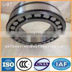 Full Complement Doule Row Cylindrical Roller Bearing Manufacturers SL045012PP
