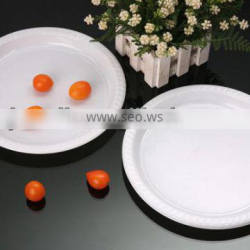 10inch nice disposable plates PS