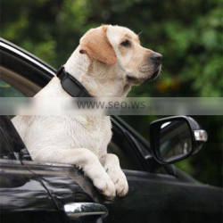 Gps Tracker Type and tracking and positioning Function gps dog tracking system dog gps collar