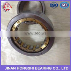 China Gold Supplier Eccentric Cylindrical Roller Bearings RN205 RN206 RN307 RN309