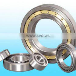 transmission bearing/ cylindrical roller bearing/ double row NN 3018