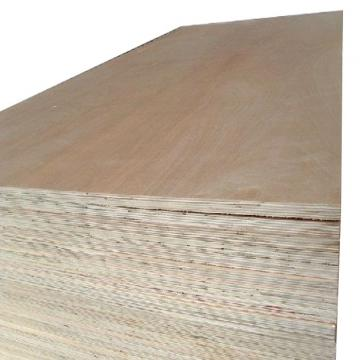 Birch Face Plywood Poplar Back Plywood 18mm Plywood