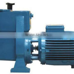 Top quality centrifugal pool water pump, iron pump for swimming pool
