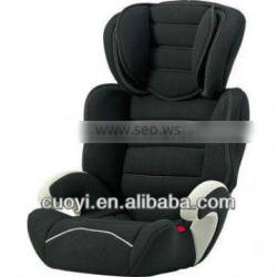 audit car seat