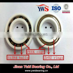 Zirconia rings Si3N4 ZrO2 balls PEEK cage ZrO2 Full ceramic bearing