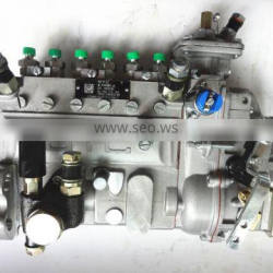 Lovol 1006 Engine Injection Pump T73208265 with Power 102-106.5KW