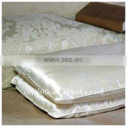 100% Natural Silk Pillows