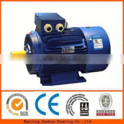 electric car dc motor Y315M-6