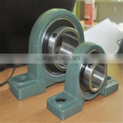 Stainless steel pillow block bearing with plastic bearing housing UC204