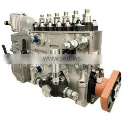 Injection Pump BH6P120015 for WD615.97 Engine