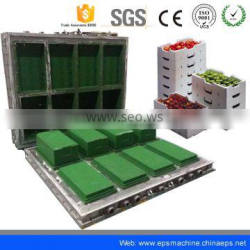 2016 Hot Selling Eps Block Mould/Eps Mould For Fish Box