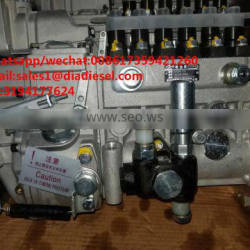 High quality Diesel LONGBENG fuel injection pump BH6PA110 for sale