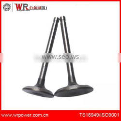R175A Exhaust Engine valve inlet and outlet valve