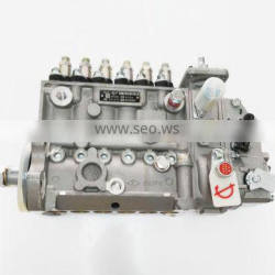 Engine Parts 6CT8.3 3973900 Fuel Injection Pump