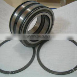 SL045016PP Double-Row Full Complement Cylindrical Roller Bearing SL045016 PP ,SL 04 5016 PPNR