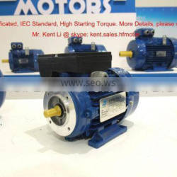 Pump Driving Usage Single Phase Motor