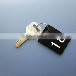 Engrave Plastic ABS Water Proof Cabinet Key Chain for Natatorium