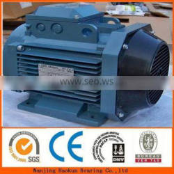 dc electrics motor for treadmills Y250M-4