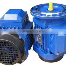 3-phase Frequency Conversion Timing Asynchronous Motor