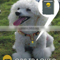 shenzhen personal ODM shoes GPS Tracker and positioning