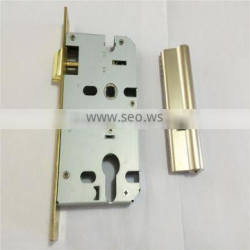 Euro Profile Cylinder Brass Mortise Whole Door Lock