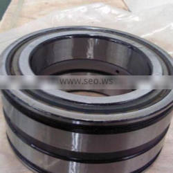 SL045036PP Double-Row Full Complement Cylindrical Roller Bearing SL045036 PP ,SL 04 5036 PPNR