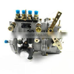 diesel engine common rail fuel injection pump CP2.2 / 0445020121