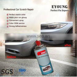 MSDS Aerosol Can Paint for car