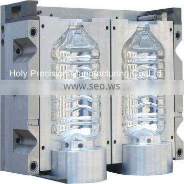 China Professional Precision Plastic Injection Mould (hl-201001)